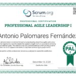 Professional Agile Leadership I