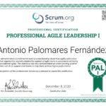 Professional Agile Leadership I