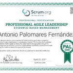 Professional Agile Leadership. Evidence Based Management