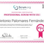 Professional Scrum With UX I